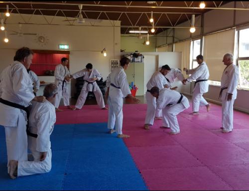 Shotokan kata bunkai – AFTK Sydney Seminar