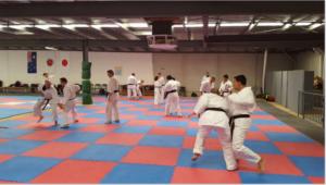 Bunkai practice